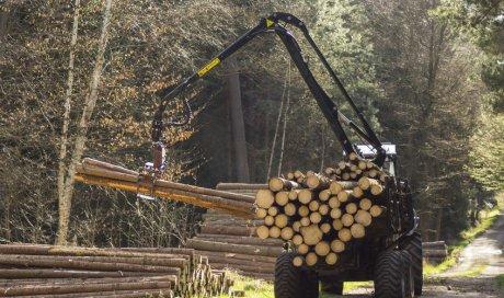 Dépannage de grappin forestier à Auxerre