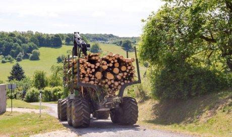 Création de chemin d'accès en zone forestière dans l'Ain
